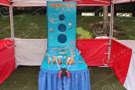 bird-flu-carnival-game