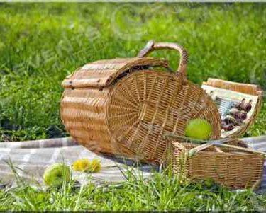 community picnics