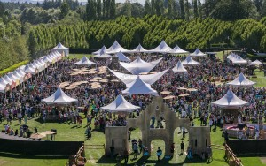 large tent rentals for any event