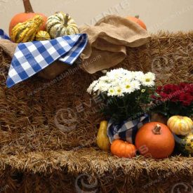 Decor with hay bales, gourds, floral and more.