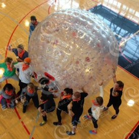 Zorb ball group activity. Team Building solutions and management/facilitation.