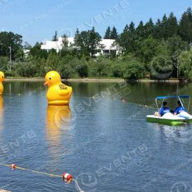 Giant Floating Rubber Duckies Installation Branded.