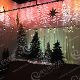 holiday design and scenic decor