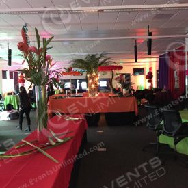 more of the rio themed event.