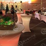 Event Design holiday decor