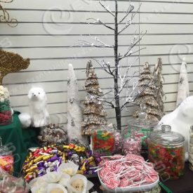 A winter forest themed candy station.