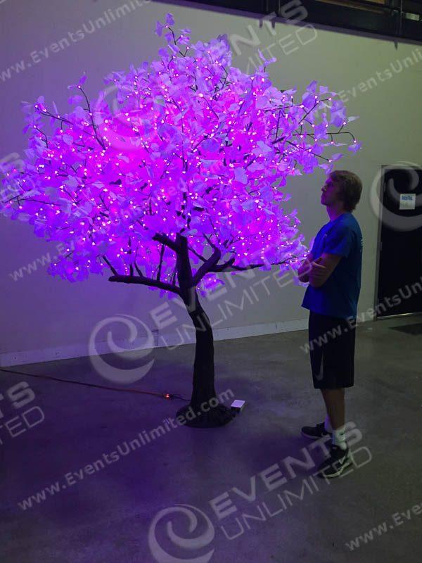 LED Tree :: Glow Tree :: Rental