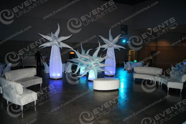 scenica design and event rental