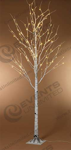 Birch LED Trees