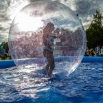Pool Party Hamster Balls